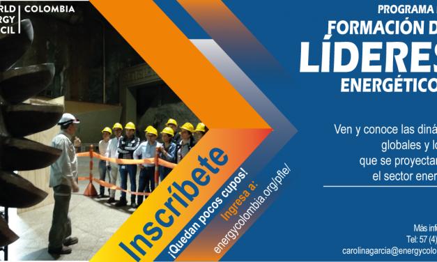 Programa de Formación de Líderes Energéticos